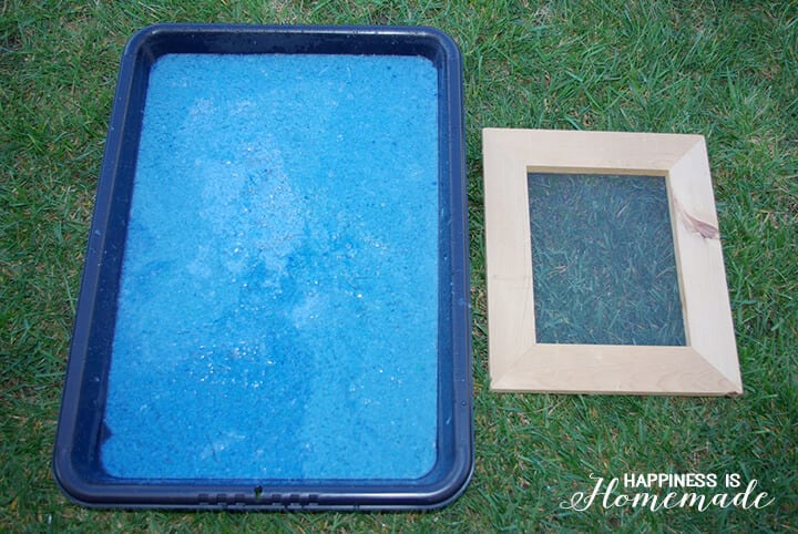 Papermaking Pulp and Screen