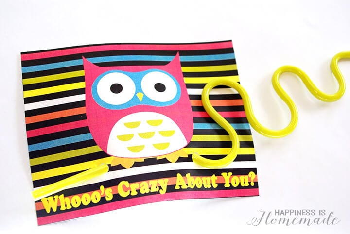 Crazy Straw Owl Valentines