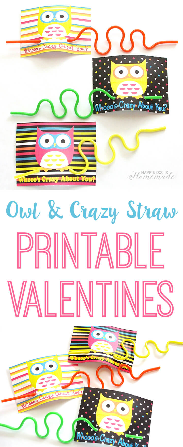 Crazy Straw Owl Valentines Happiness is Homemade – Owl Valentines Day Cards