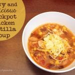 Easy and Delicious Crockpot Chicken Tortilla Soup