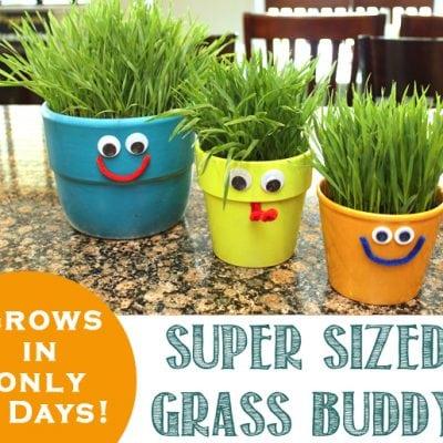 Jumbo Super Sized Grass Buddy