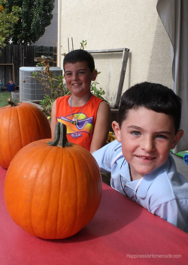 Ready to Carve Pumpkins