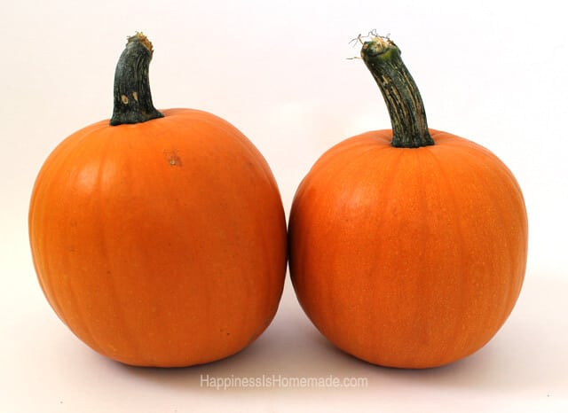 Two Pumpkins For Homemade Puree #FreshFinds #shop