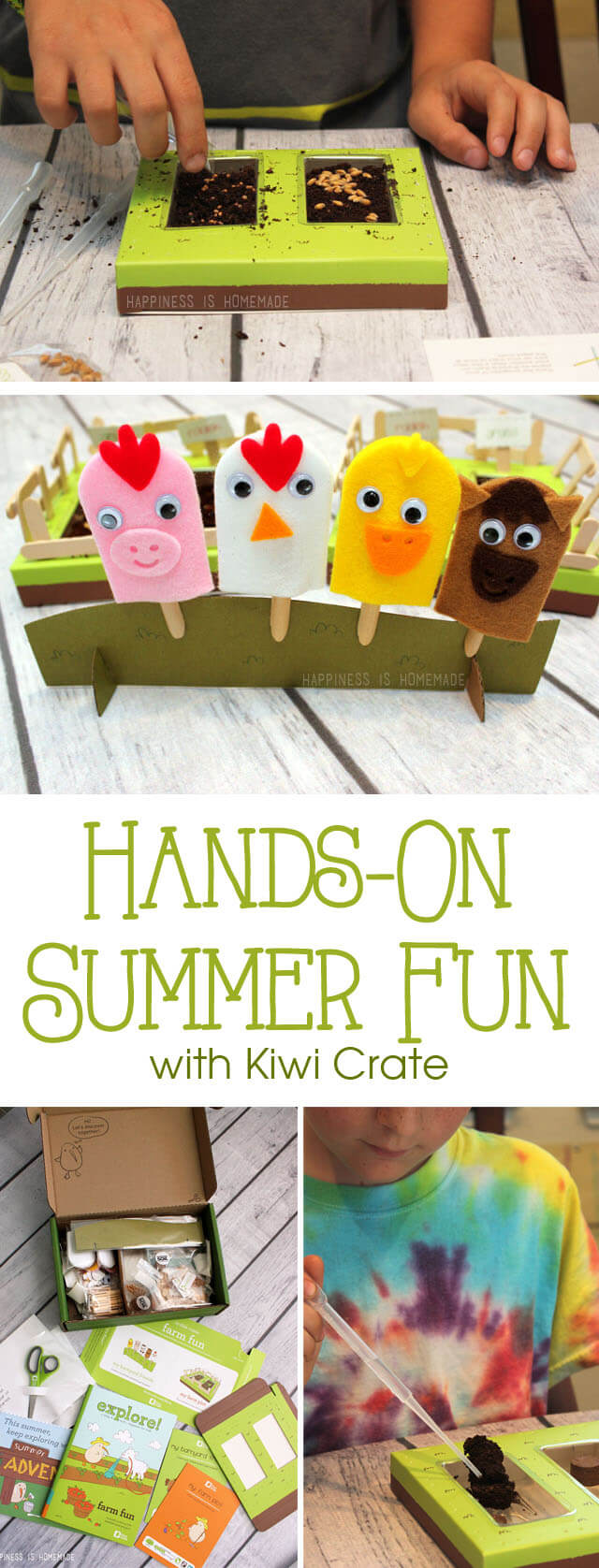 Hands On Summer Fun with Kiwi Crate