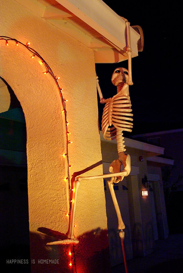 Skeleton Wall Climber