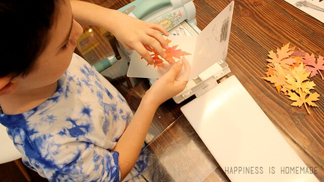Embossing Paper Leaves with Sizzix Tim Holtz Dies