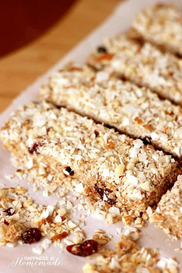 Easy No Bake Berry Almond Coconut Protein Bars