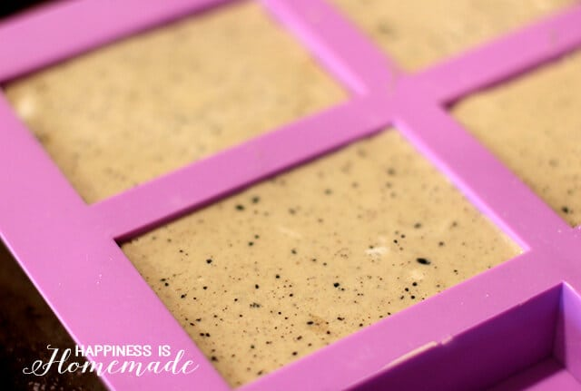 Melt and Pour Coffee and Milk Soap