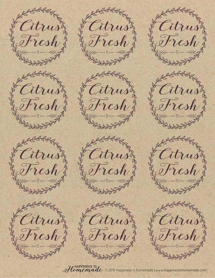 Citrus Fresh Candle Labels Sheet