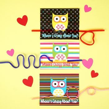 Owl + Crazy Straw Valentines Cards