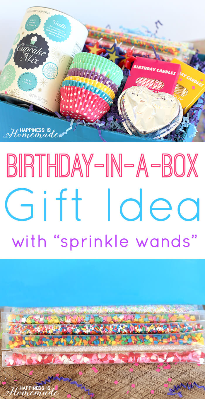 Birthday in a Box Gift Idea