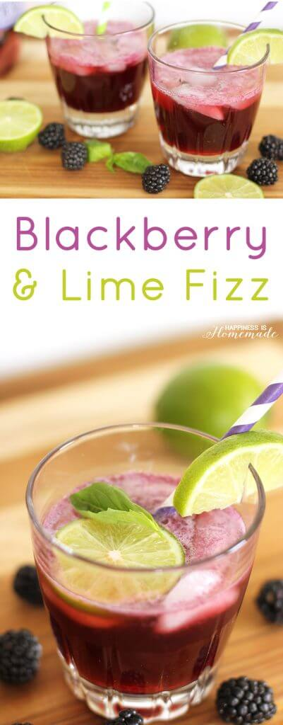 Blackberry and Lime Fizz Spring Cocktail Recipe