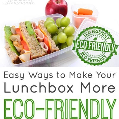 Easy Ways to Make Your Lunchbox More Eco-Friendly