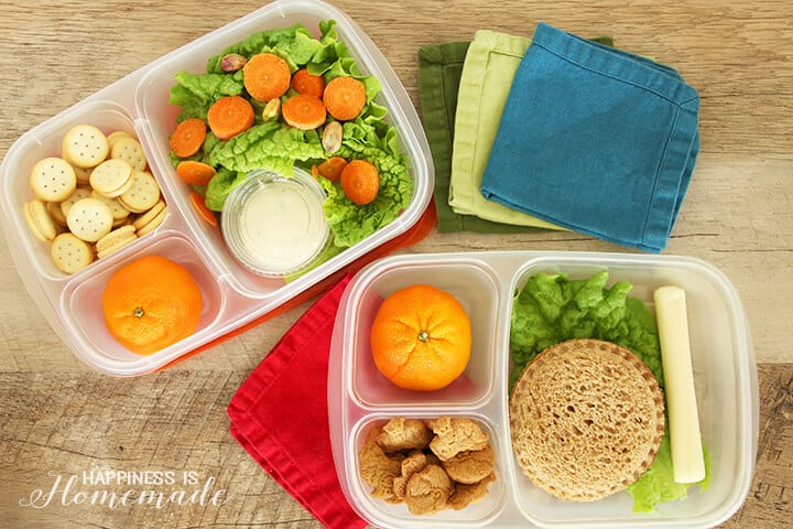 Reusable Lunch Containers for a Greener Lunchbox