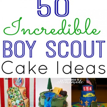 50 Incredible Boy Scout Cake Ideas