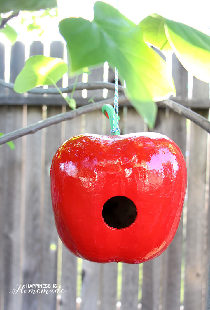 Apple Birdhouse from a Dried Gourd