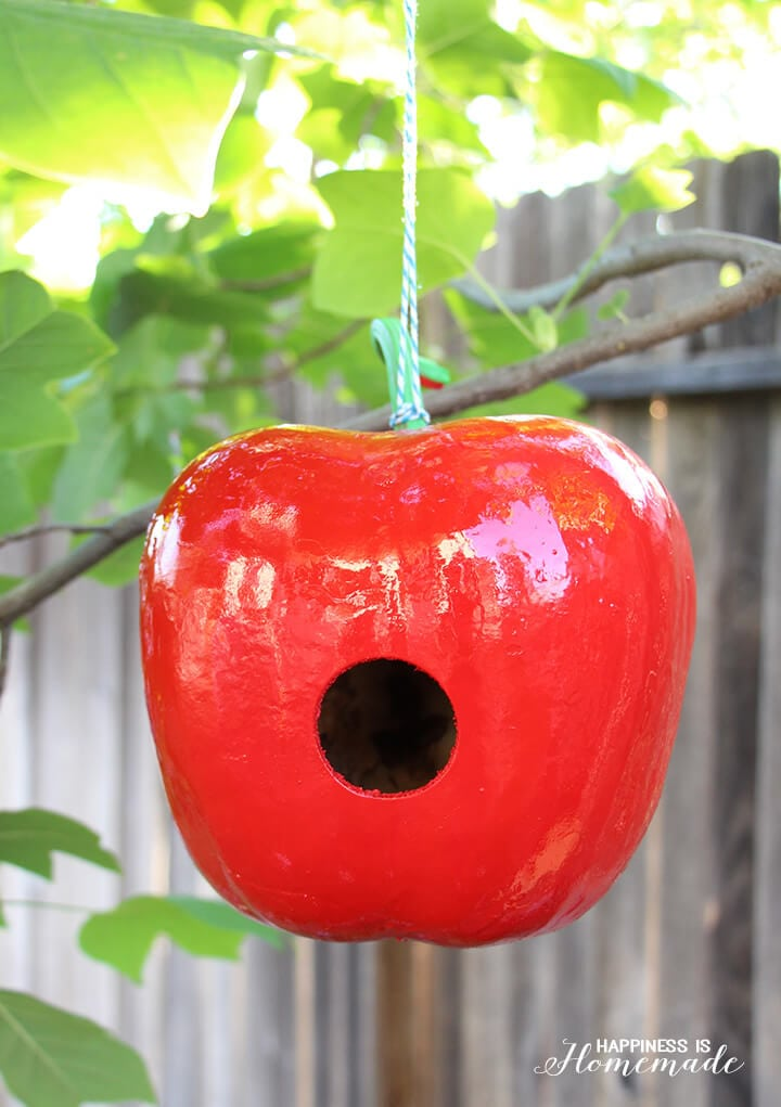 Apple Shaped Gourd Birdhouse