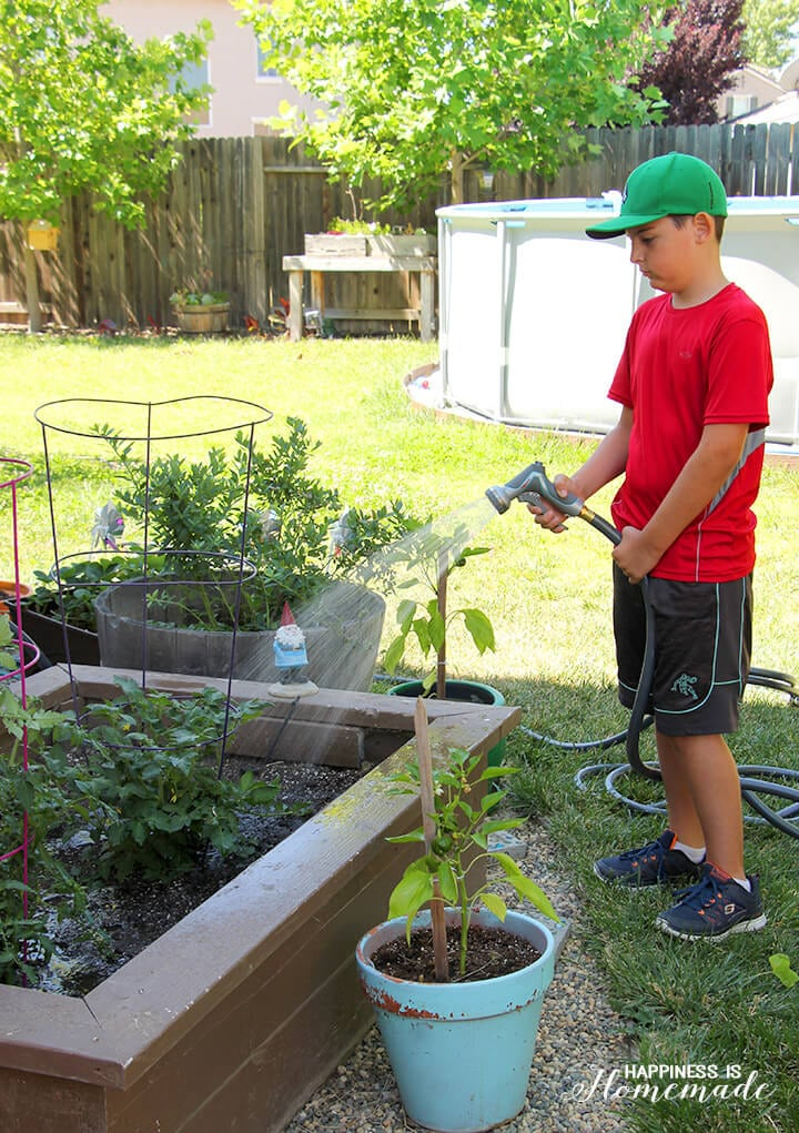 Watering the Garden with Gilmour
