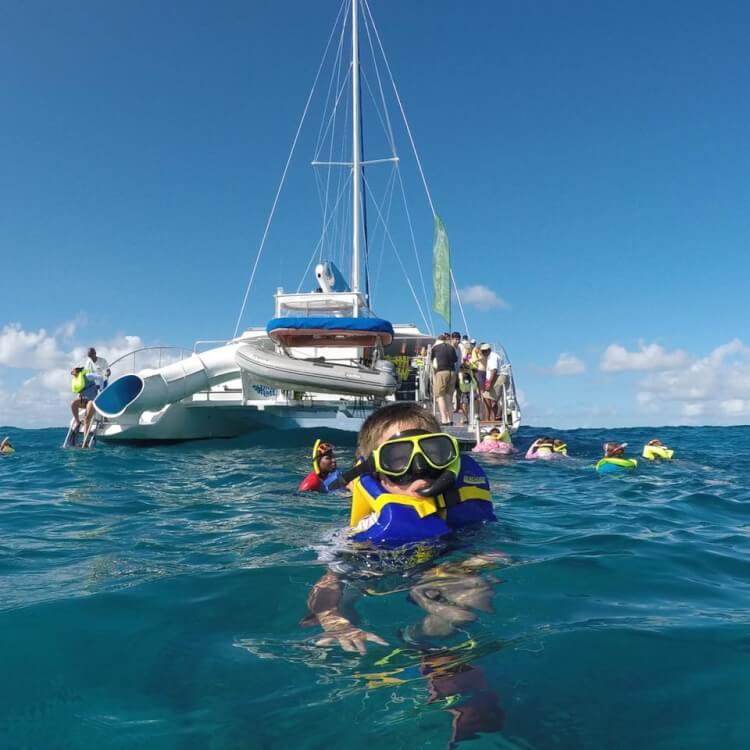 Snorkeling - Jasmine Risso