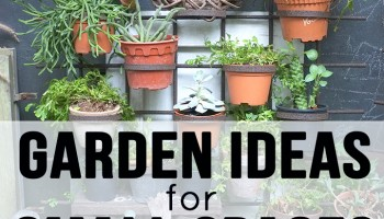20 Garden Ideas for Small Spaces