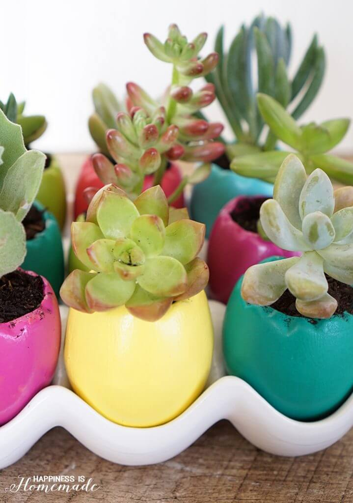 Bright and Cheery Spring Easter Egg Succulent Planters