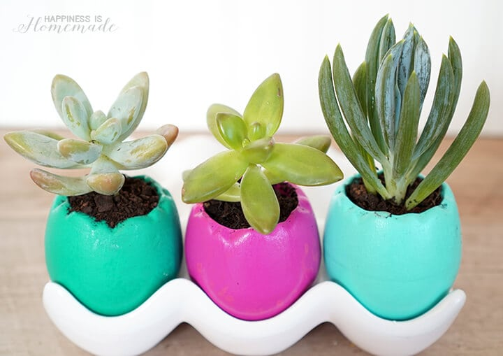 Ceramic Easter Egg Succulent Planters for Spring