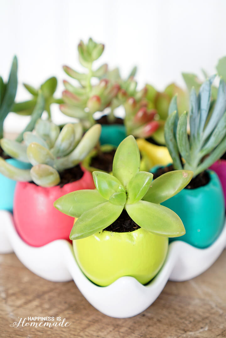 Colorful Ceramic Easter Egg Succulent Planters