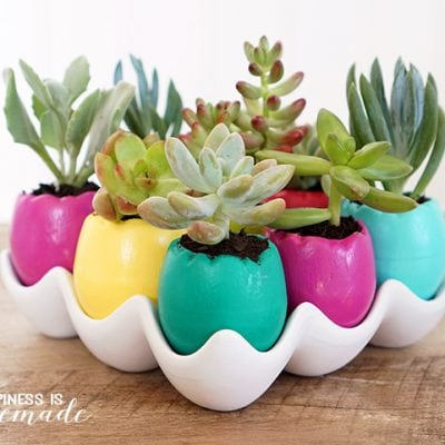 Easter Egg Succulent Planters