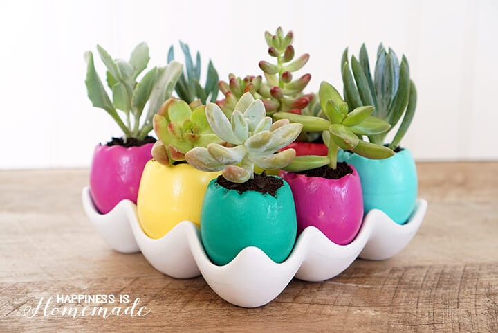 Easter Egg Succulent Planters - Bright and Cheery for Spring Time