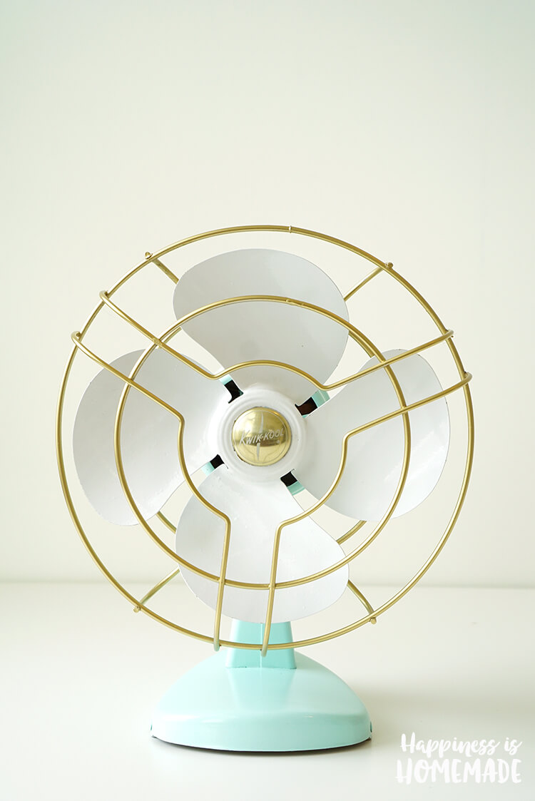 Give an Old Fan a New Look with Paint
