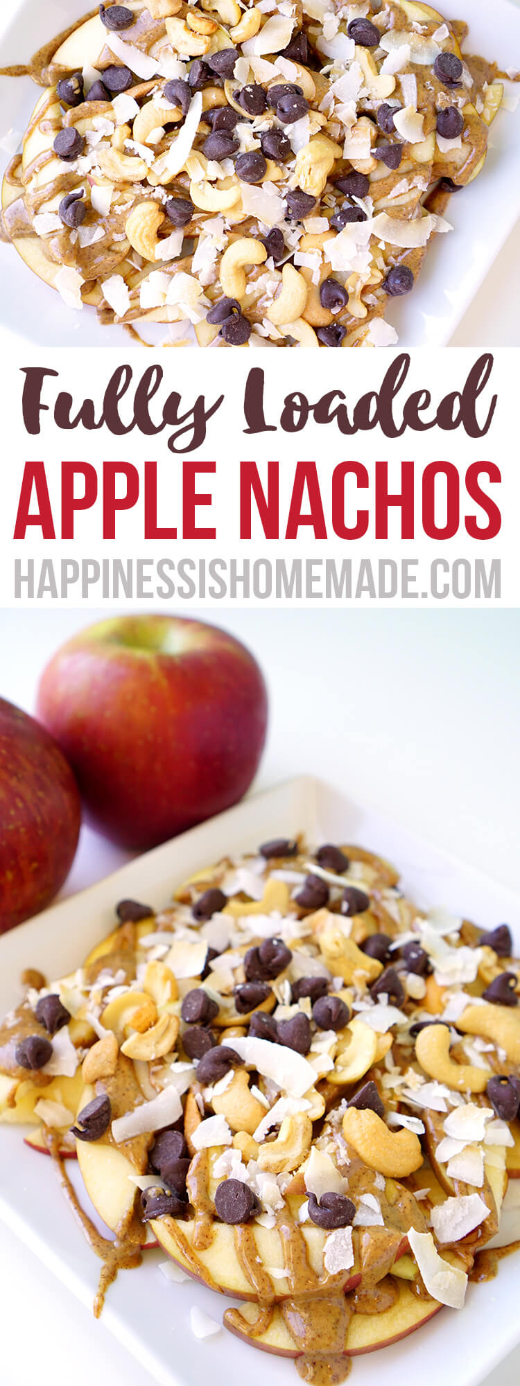 Fully Loaded Apple Nachos Snack