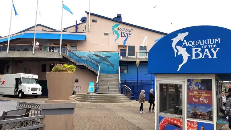 Aquarium Of The Bay San Francisco Happiness Is Homemade