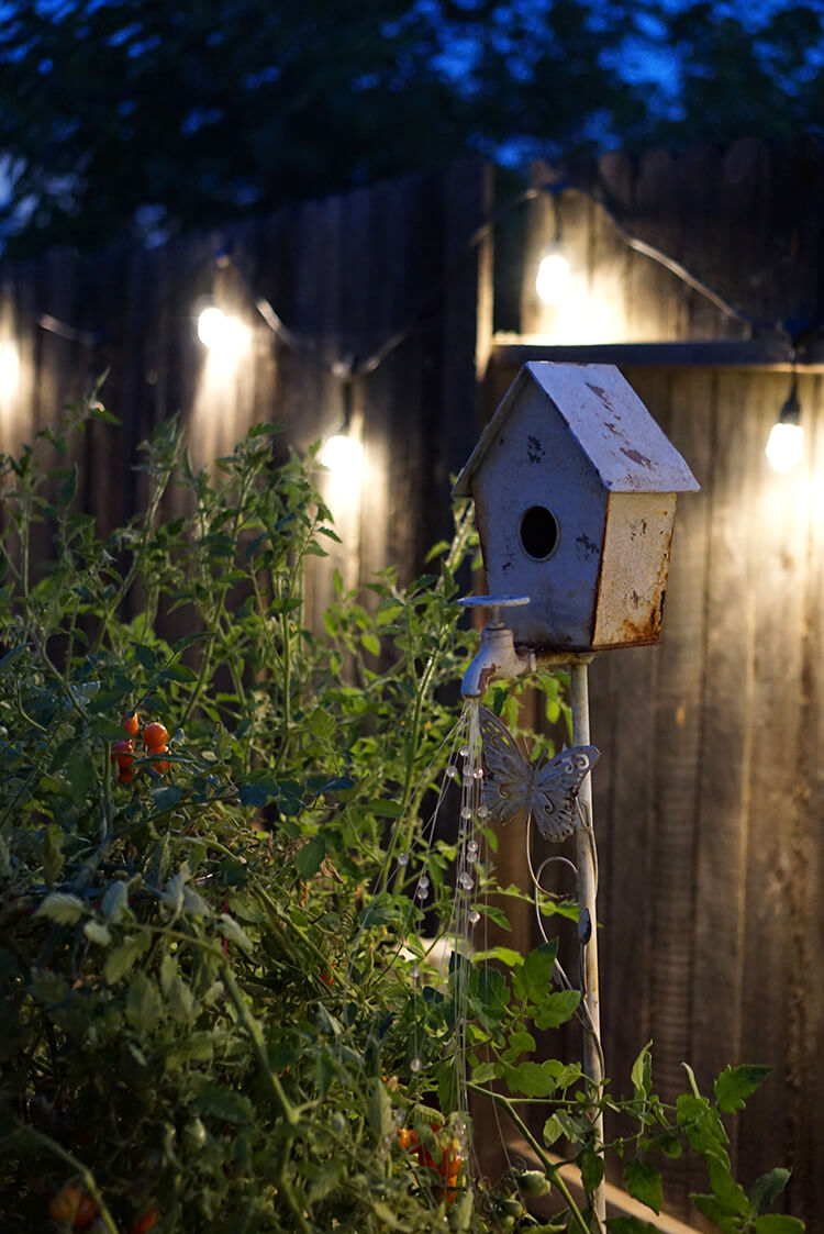 Envision Cafe Garden Lights 2