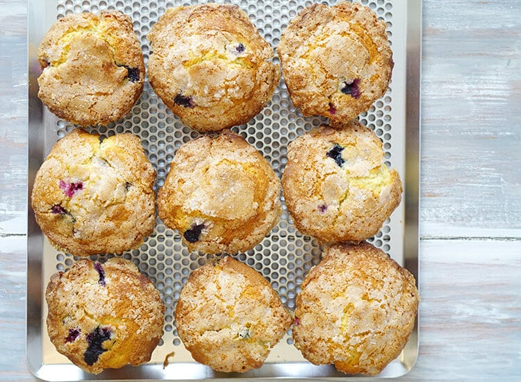 The Best Bakery Style Blueberry Muffin Recipe Ever