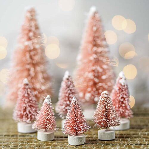 pink-sisal-trees