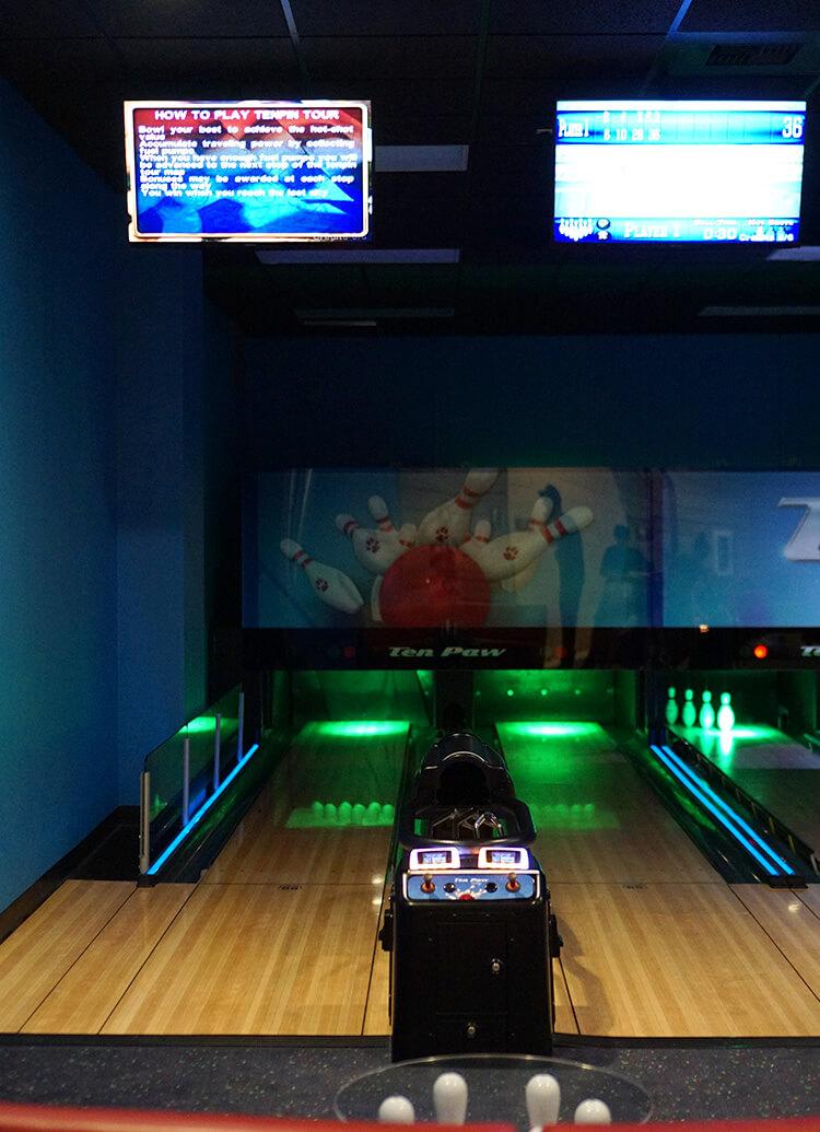 ten-paw-bowling