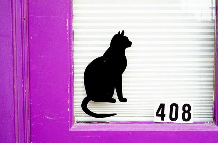 Purple Cat Door