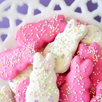 Easter Bunny Circus Animal Cookies