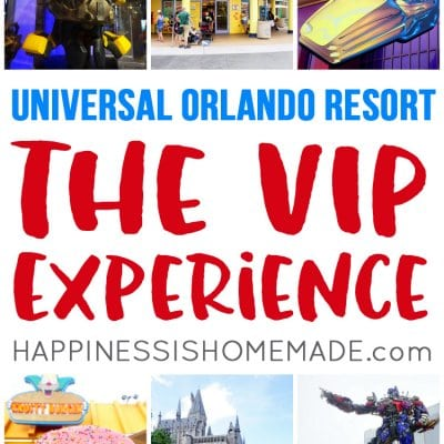The VIP Experience at Universal Studios Florida