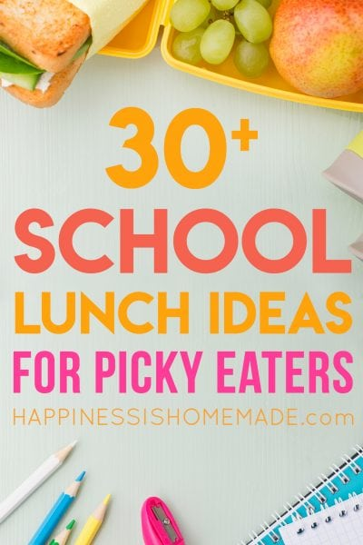 30+ School Lunch Ideas for Picky Eaters