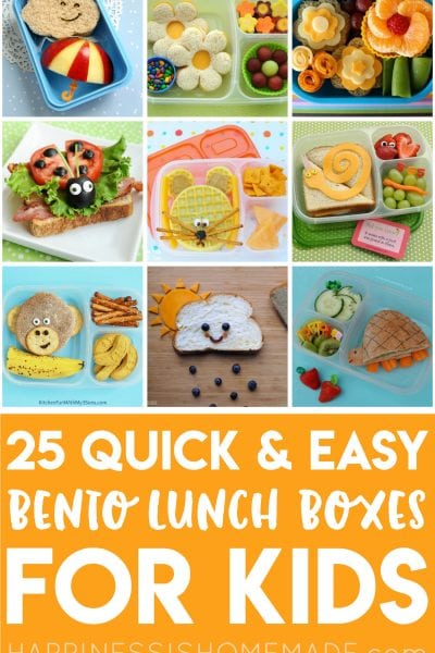 25+ Easy Bento Lunch Boxes for Kids