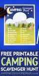 """Free Printable Camping Scavenger Hunt"" graphic with printable game, pine cone, and pen"