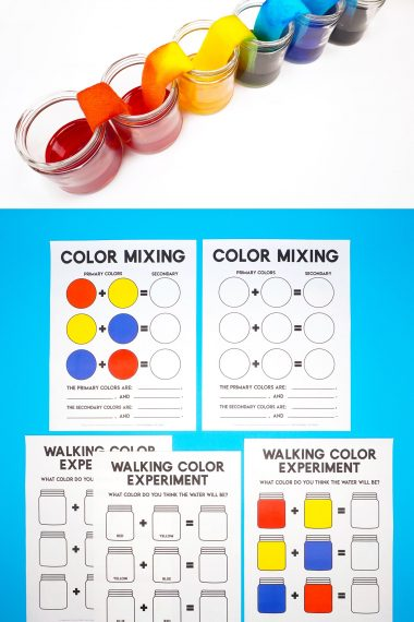 Walking Rainbow STEM Activity and Printables - cups of rainbow water and color mixing printables