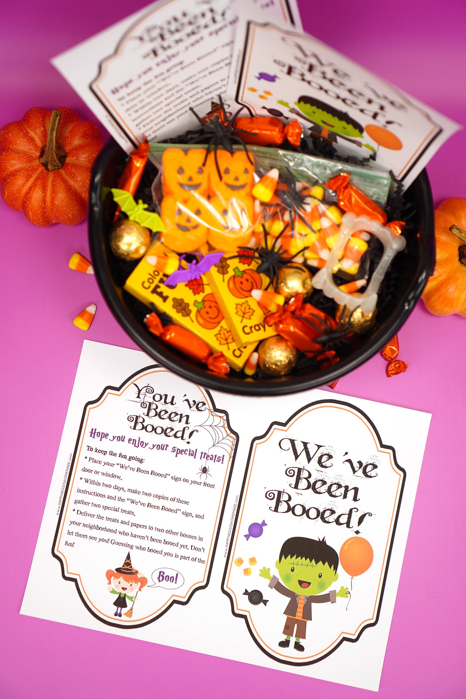 "Boo Basket filled with Hallowen candy and novelty toys with ""You've Been Booed""and "" We've Been Booed"" printable signs on purple background"