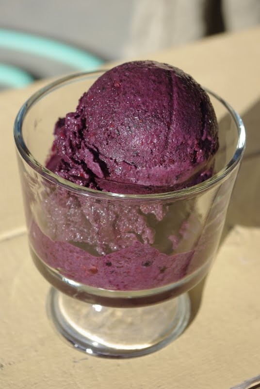 Blackberry Sorbet {Recipe} - Happiness is Homemade