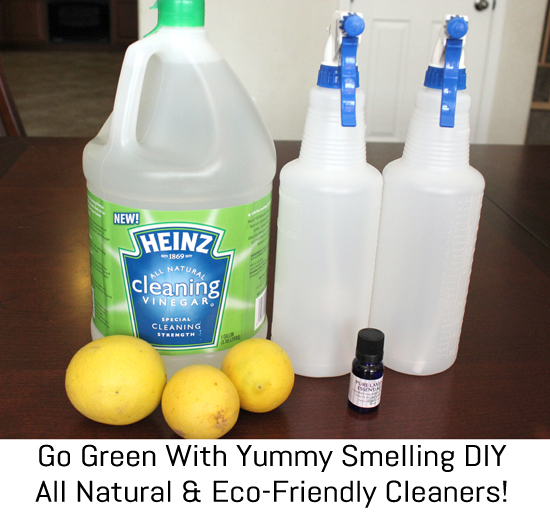 Go Green Eco Friendly Cleaning With Heinz Cleaning
